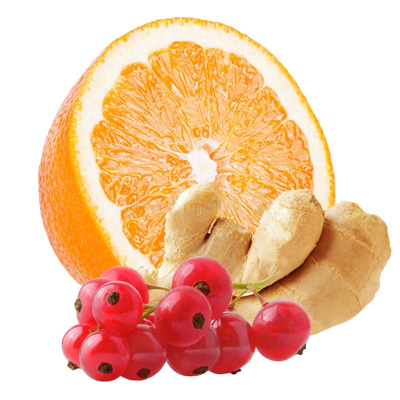 Orange with ginger and red currant isolated on white. Isolated fruit. Orange with ginger and red currant isolated on white background with clipping path as royalty free stock photography