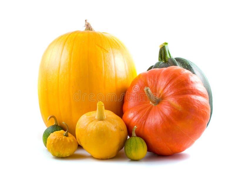 Orange, grüne und gelbe Kürbise stockfotografie