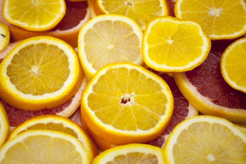 Orange grapefruit slices background texture. royalty free stock photo