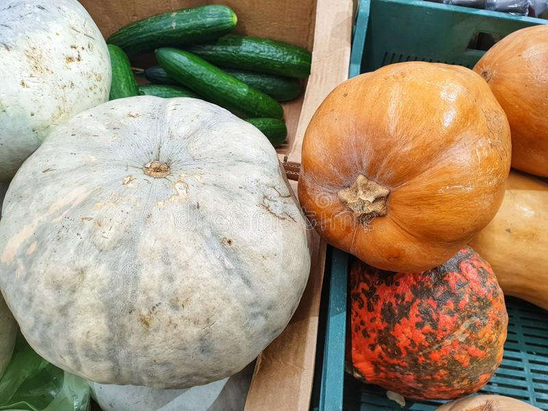 Orange and Gray Pumpkins at Farmer& x27;s Fairs at Vegetable Counters stock photography