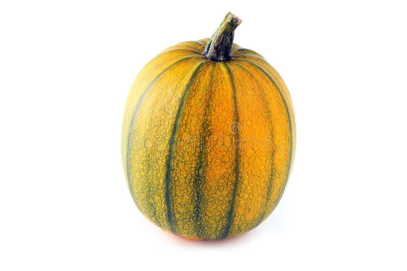 Orange green pumpkin on isolated white background.  stock photo