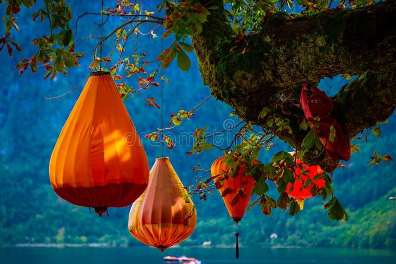Orange hänga för lyktor fotografering för bildbyråer
