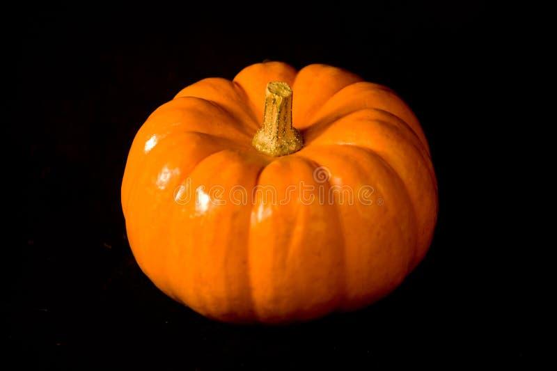 Orange Halloween-Kürbis ungeschnitten lizenzfreie stockbilder