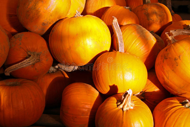 Orange Halloween-Kürbise stockfoto