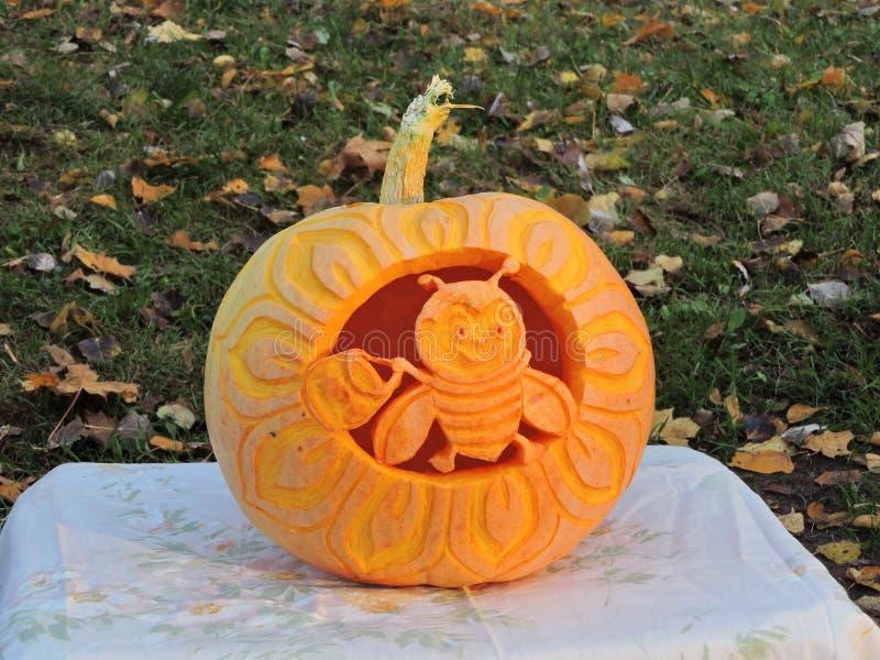Orange halloween pumpkin stock image