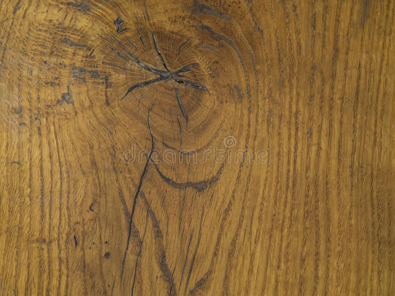 Orange hardwood board table with knot hole and annual rings nat royalty free stock image
