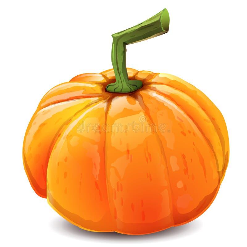 Orange Herbst K?rbis lizenzfreie abbildung