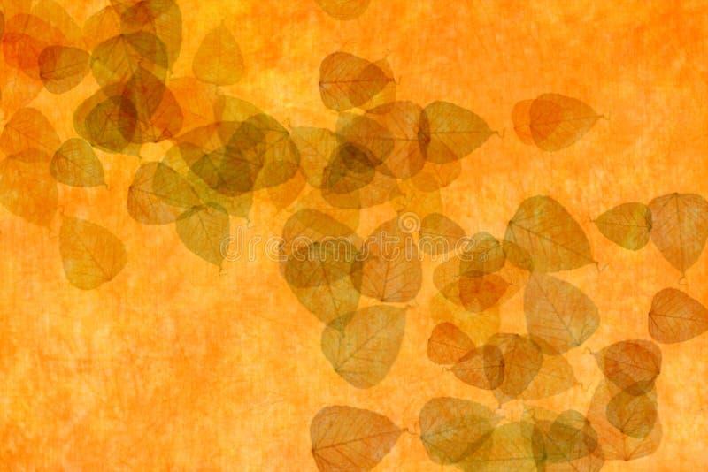 Orange Hintergrund mit Blättern lizenzfreie stockfotos