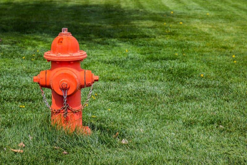 Orange Hydrant auf dem Gebiet lizenzfreie stockfotos