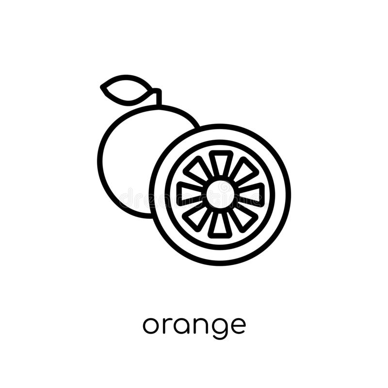 Orange icon from Fruit and vegetables collection. Orange icon. Trendy modern flat linear vector orange icon on white background from thin line Fruit and royalty free illustration