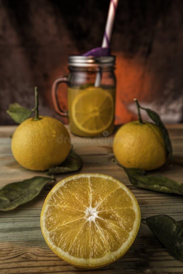 Orange Juice Brushes royaltyfri foto