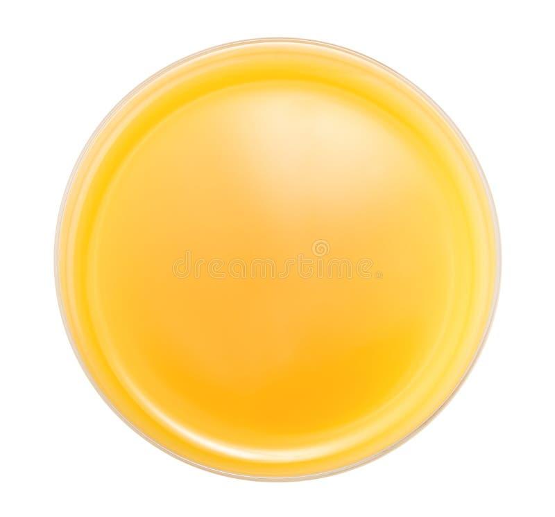 Orange juice glass, Citrus fruit drink white background royalty free stock images