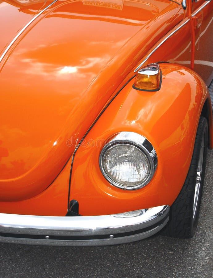 Orange Käfer