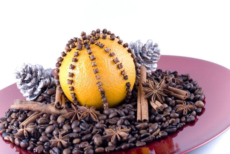 orange kryddor arkivbild