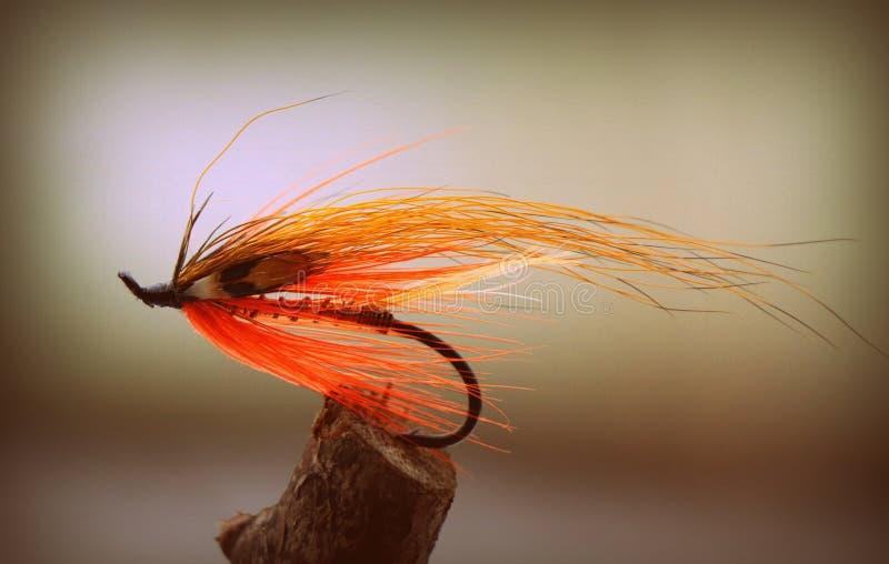 Orange laxräkafluga för flugafiske fotografering för bildbyråer