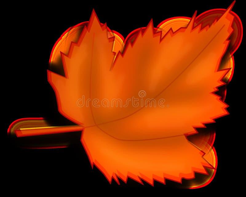 Orange, Leaf, Flower, Petal stock photos