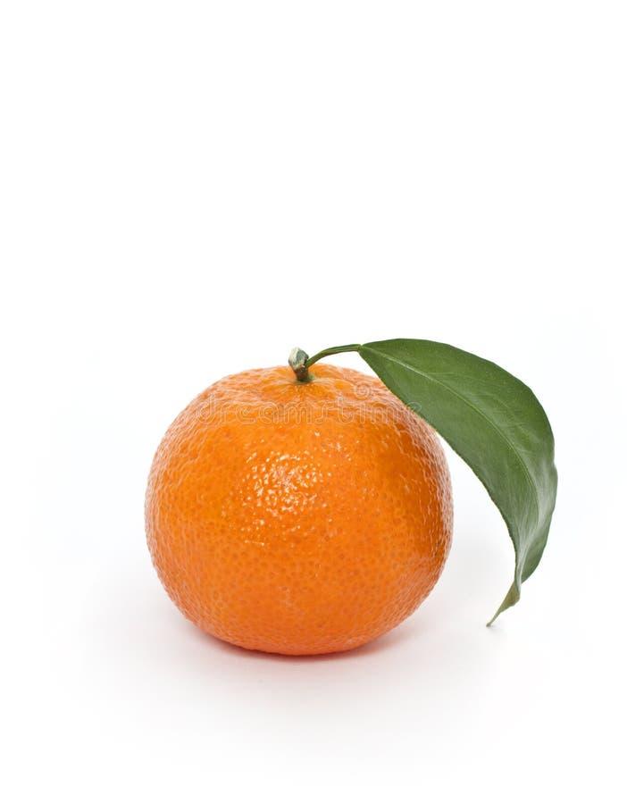 Orange with leaf royalty free stock photo