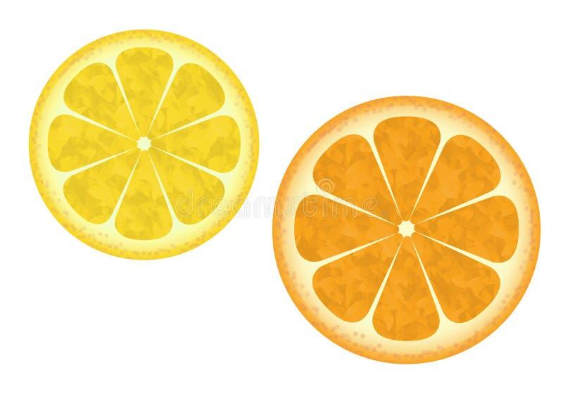 Orange and lemon vector illustration