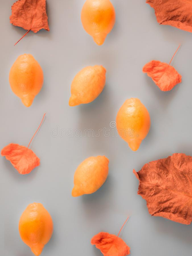 Orange lemons and fall leaves pattern on grey royalty free stock images
