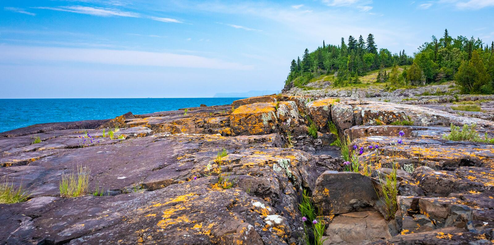 Orange Lichen and Grey stones in Ontario, Canada. Colorful Lichen grow on the stones on the Tee Harbour Trail hike in Sleeping Giant Provincial Park, Ontario royalty free stock images