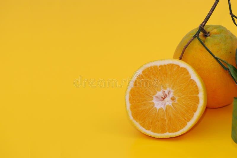 Download Orange in Life stock image. Image of half, drink, fruit - 7390411
