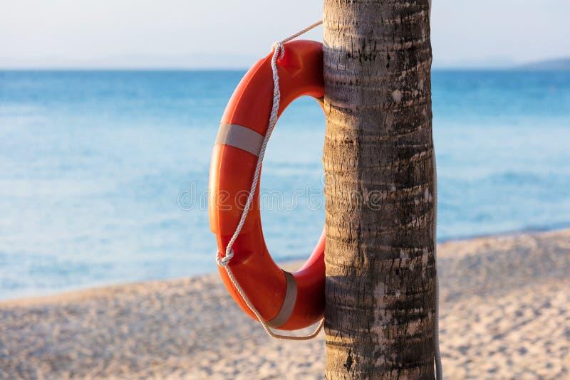 Orange lifebuoy ringer royaltyfria bilder
