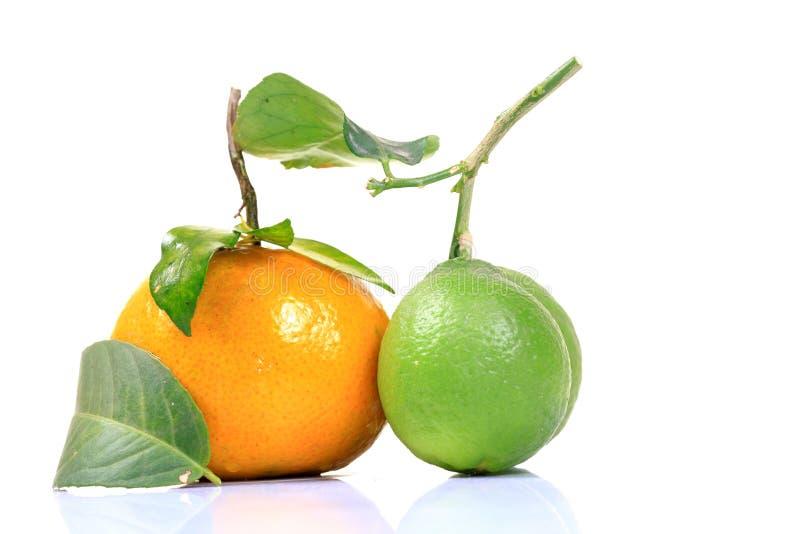 Orange and lime. Fruit isolated on white background royalty free stock photography