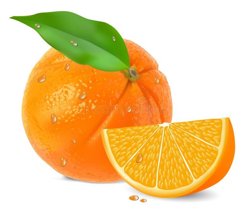 Orange mit Segmenten vektor abbildung