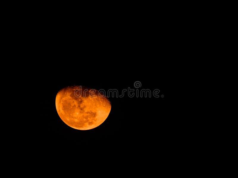 Orange moon royaltyfria bilder