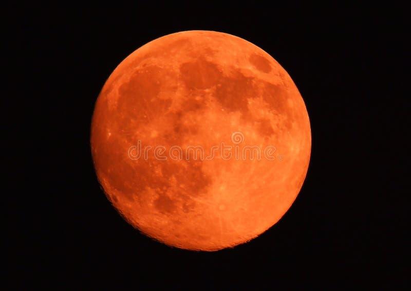 Orange moon fotografering för bildbyråer