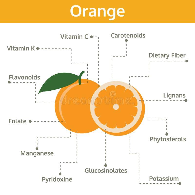 Orange Nährstoff von Tatsachen und von Nutzen für die Gesundheit, Informationsgraphikfrucht stock abbildung