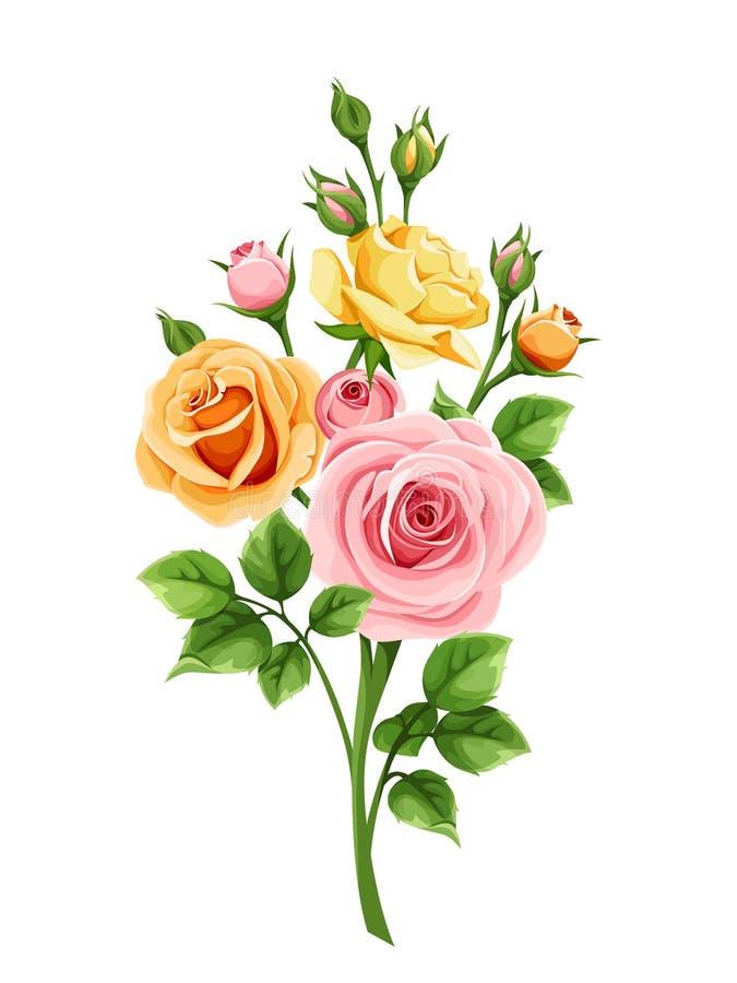 Orange och gula rosor för rosa färger, också vektor för coreldrawillustration stock illustrationer