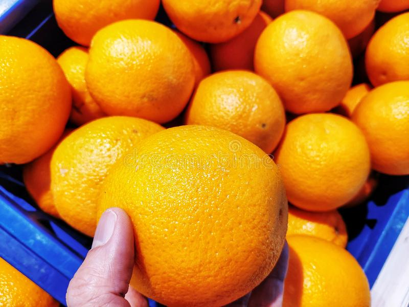 Orange is in one hand. Many more are behind the scenes in a blue basket. royalty free stock photos