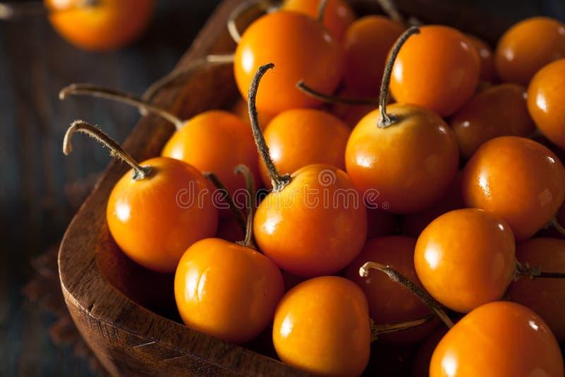 Orange Organic Cape Gooseberries. In a Bowl royalty free stock image