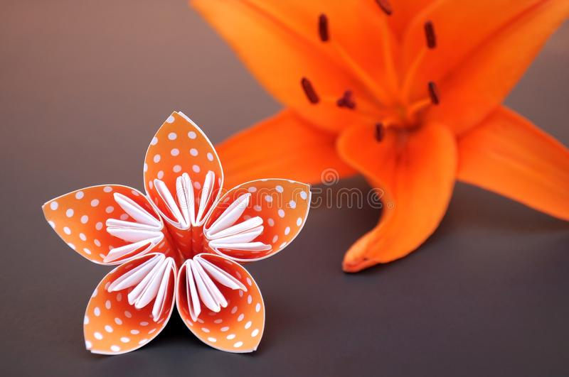 Orange origami flower made of polka dotted paper and real lily. royalty free stock image