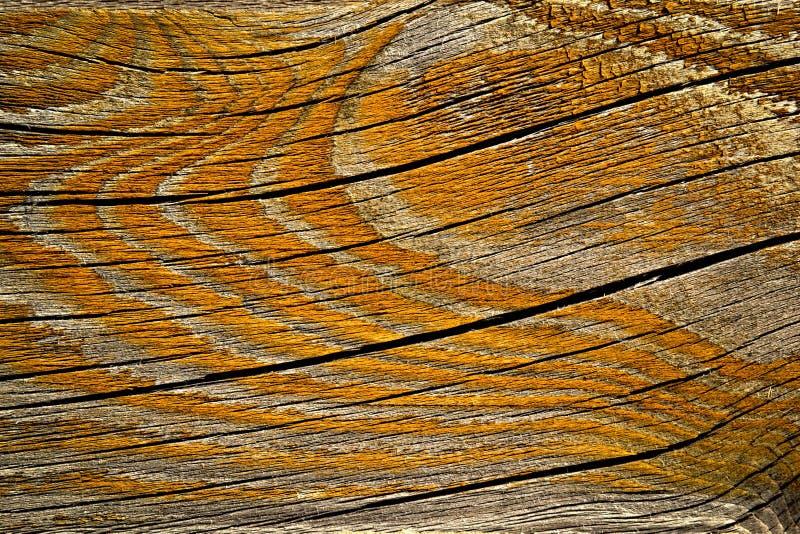Orange painted rift wood stock images