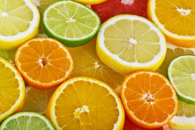 Orange, pamplemousse et citron photo stock