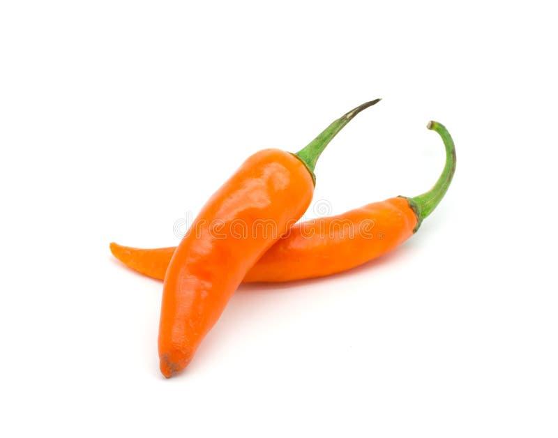 Orange peppar för varm chili royaltyfri fotografi