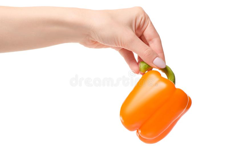 Orange pepper in a hand royalty free stock photos
