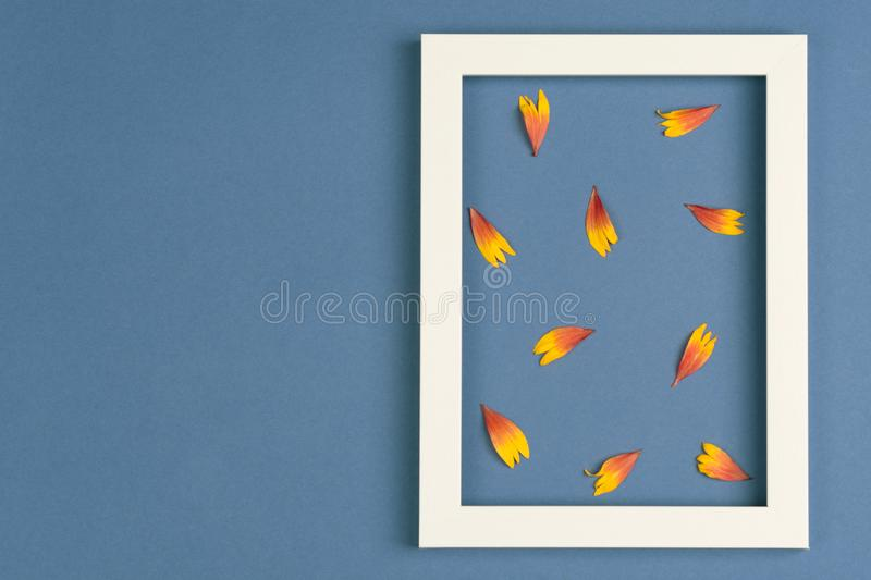 Orange petals, photo frame on a blue background. Top view, copy space. Flat lay stock photos