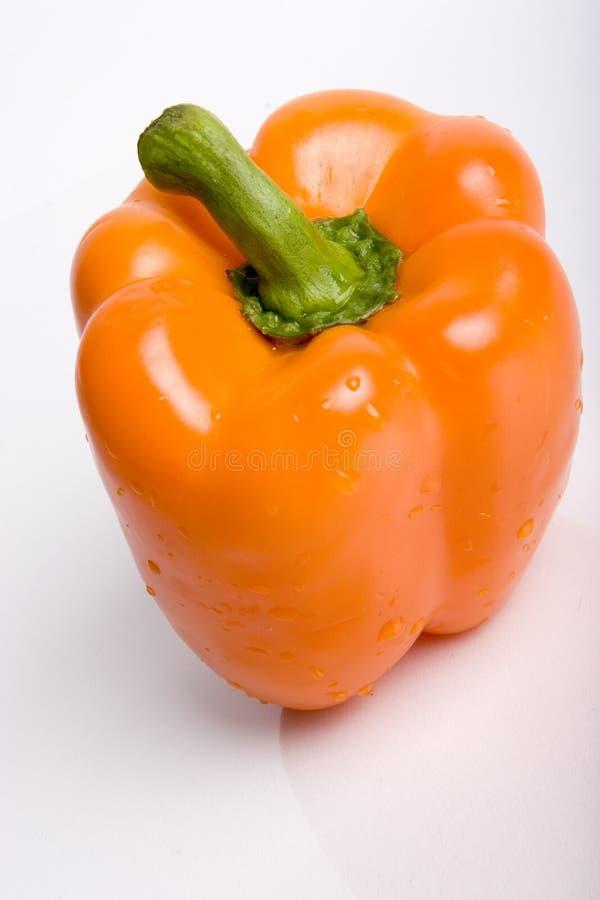 Orange Pfeffer lizenzfreies stockbild