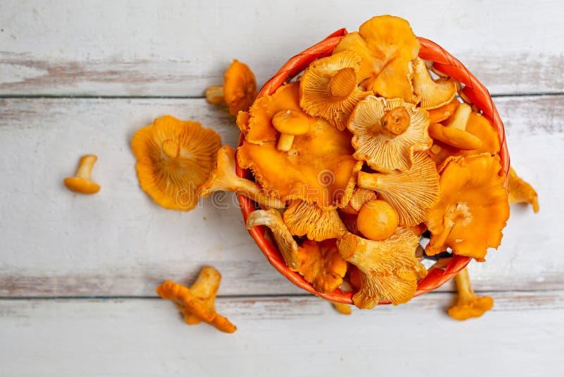 Orange Pilzpfifferlinge in einem Weidenkorb und Zerstreuen auf einen wei?en Holztisch Abschluss oben Horizontale Streifen lizenzfreie stockfotografie