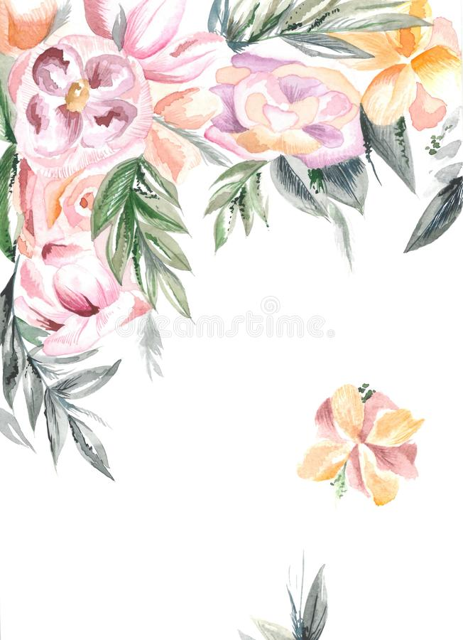 Orange and pink flowers vector illustration