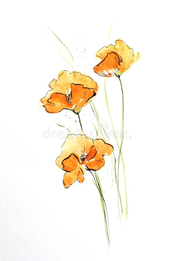 Orange poppies. Floral summer design with hand-painted abstract orange flowers and green leaves on white background. Art is painted and created by photographer