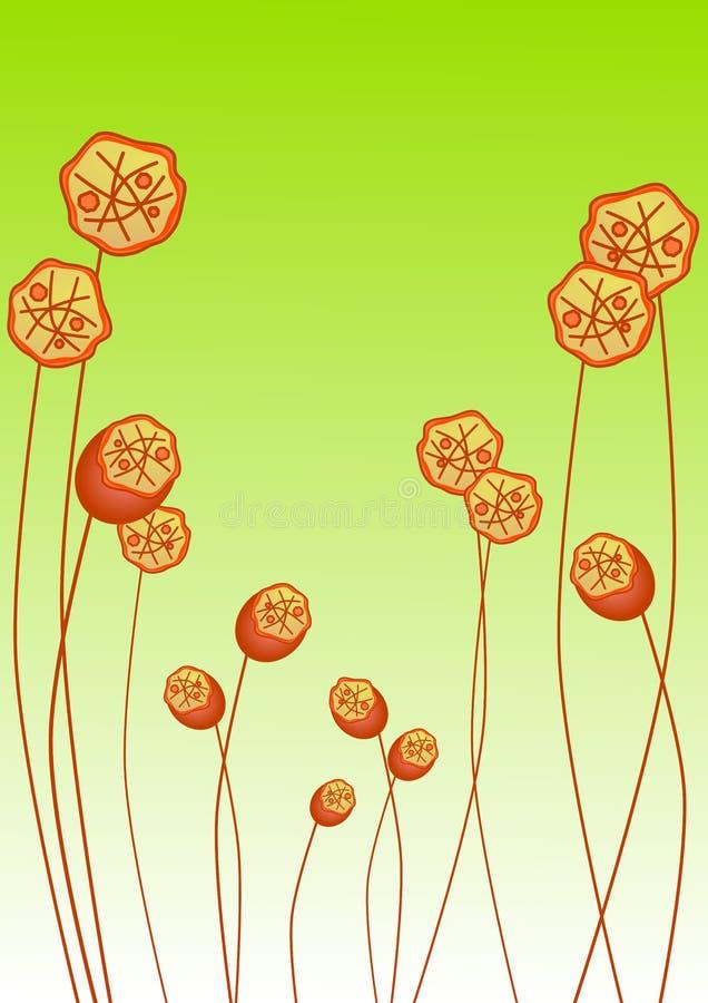 Orange poppies invitation card vector illustration