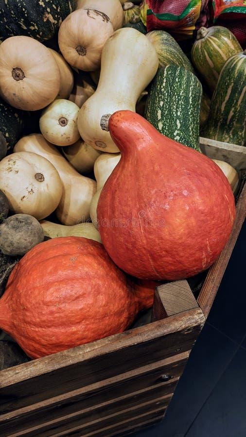 orange pumpa royaltyfria foton