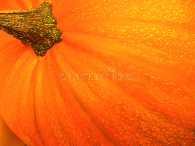 orange pumpa arkivbild