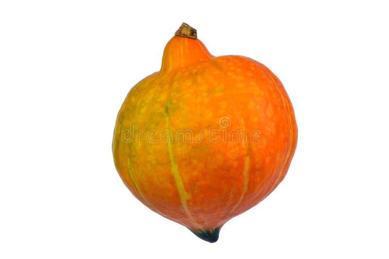 Orange pumpa som isoleras på vitbakgrund royaltyfri foto