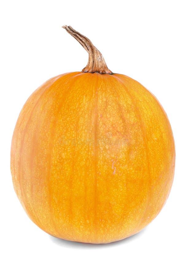 Orange Pumpkin Royalty Free Stock Photography