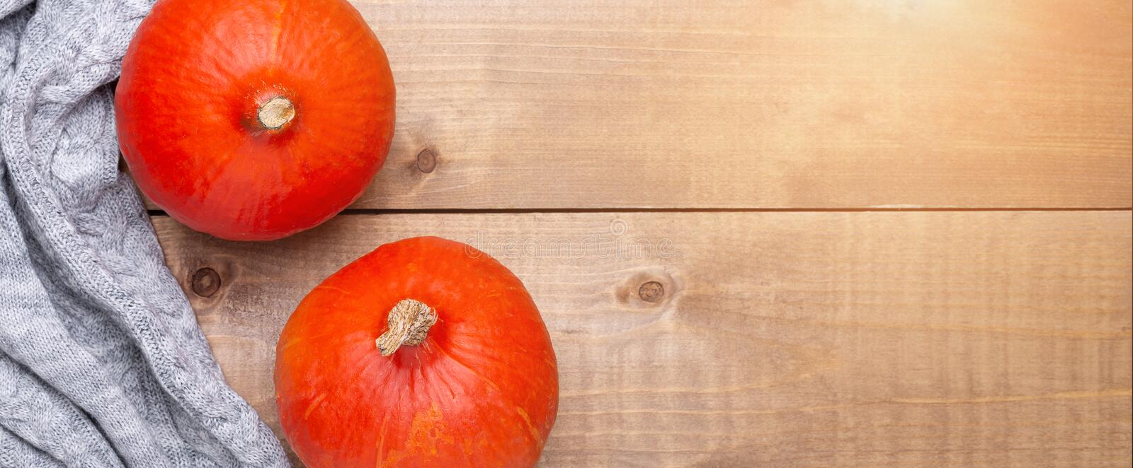 Orange pumpkin, cozy sweater on wooden background. Rustic style. Autumn concept. Top view. Horizontal banner Sun flare. Orange pumpkin, sweater on wooden royalty free stock images